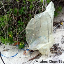 Mylar balloon litter in beach vegetation