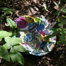 Mylar balloon litter in the woods near a salt marsh in Rye Beach, New Hampshire