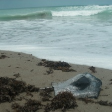mylar balloon on seashore