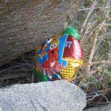 Mylar balloon polluting Anza-Borrego Desert State Park, California
