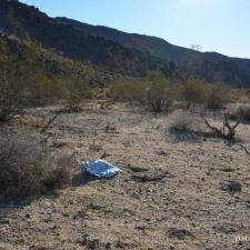 Mylar balloon polluting Joshua Tree National Park, California