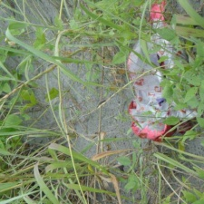 Mylar balloons trashing beach
