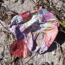 Mylar birthday balloon in sand dunes - balloon pollution