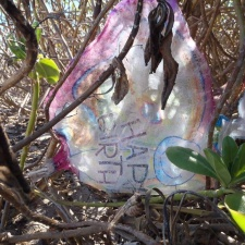 mylar balloon in mangrove