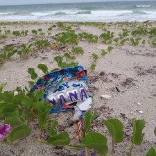 Nana Mylar balloon littering beach