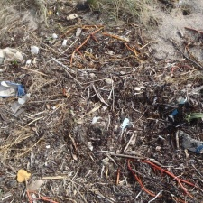 Plastic pollution washed in with the sargassum