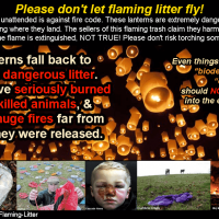 Sky lanterns can end up as deadly litter. They have killed animals, almost killed people and have sparked huge structure fires