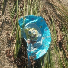 Spongebob Mylar Balloon in seagrass