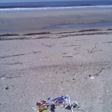 Tangled balloon bits and string on beach found before endangered Piping Plover chicks hatched