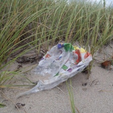 mylar balloon in beach sea grass