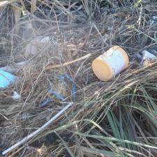 Plastic in sand dune