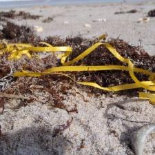 balloon ribbon polluting beach