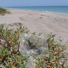mylar balloon litter on beach