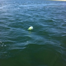 balloon floating out at sea