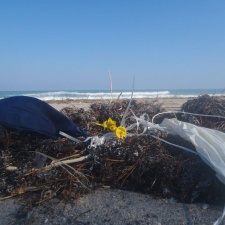 balloon pollution in sargassum