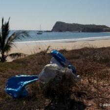 bunch of mylar balloons polluting Bahia Tenacatita, on the Gold Coast of Mexico
