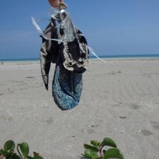 balloons polluting beach