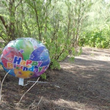 happy birthday mylar balloon in wooded area