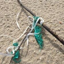 latex balloon ribbon caught on stick on beach