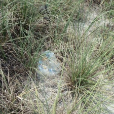 mylar balloon in sea grass