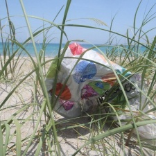 mylar balloon in beach seagrass