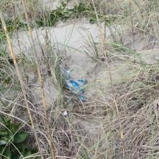 mylar balloon in sea grass