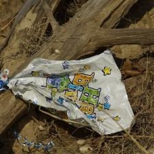 mylar balloon litter found in Elizabeth Morton National Wildlife Refuge Noyack, NY