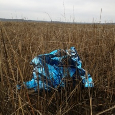mylar balloon polluting grassland