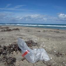 mylar balloon pollution on beach