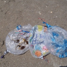 mylar balloons littering beach
