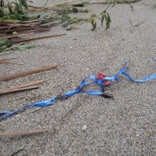 latex balloon bit with ribbon polluting beach