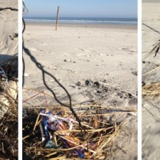ribbons from latex balloons polluting New Jersey shoreline