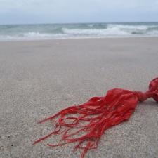 shredded latex balloon littering beach