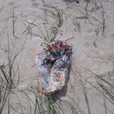 singing mylar balloon on sand dune