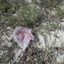 valentine's day mylar balloon polluting beach